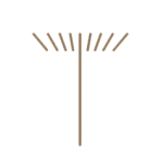 Tribuna de Cuiabá favicom